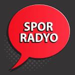 Spor Salonu Radyo Müzik Yayın